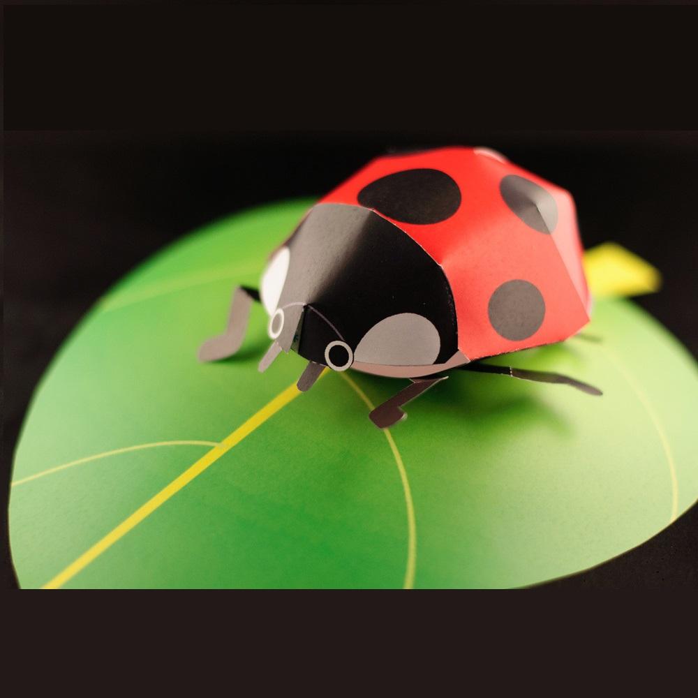 Workshop: Microwereld - de natuur in 3D